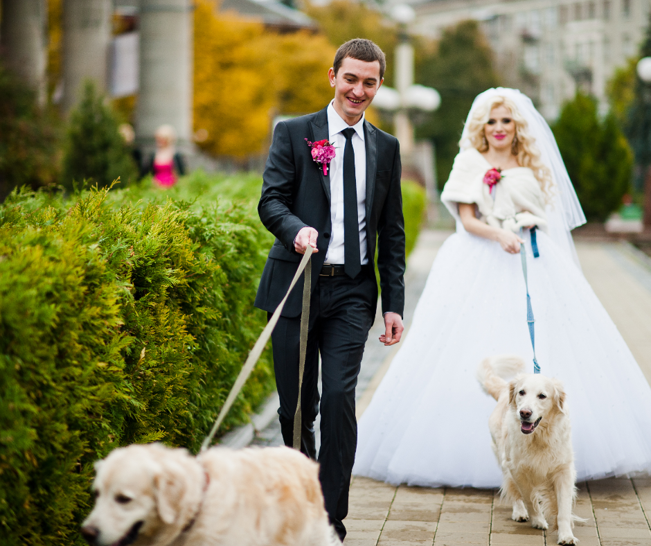 "Make Your Wedding Day ""Pawfect"" With These 4 Important Tips."